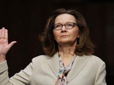 """Votos de Democratas garantem aprovação da """"Rainha da Tortura"""""""