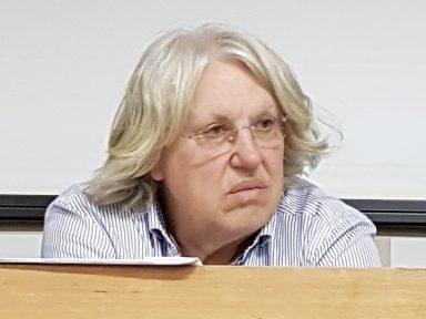 """Ildo Sauer: """"venda da Eletrobrás é coisa de gângsters"""""""