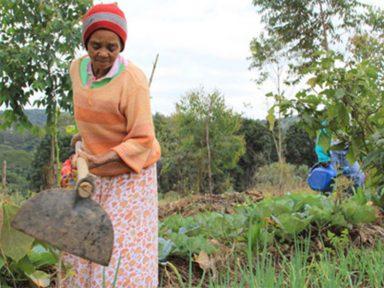 """CONTAG: proposta para aposentadoria dos agricultores """"é injusta e penaliza ainda mais as mulheres"""""""