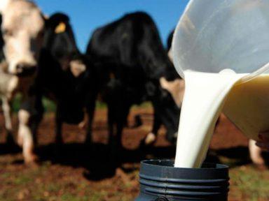 Governo derruba tarifas de importação de leite