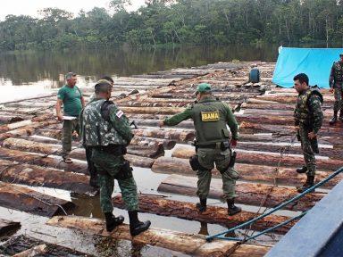 Após decreto de Bolsonaro, Ibama deixou de registrar multas em seu sistema