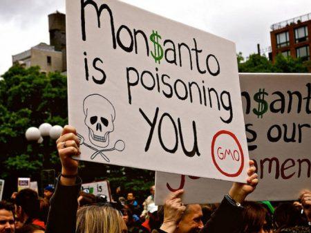 Monsanto/Bayer é condenada pela 2ª vez por causar câncer com o pesticida Roundup