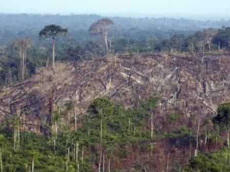 MP da Grilagem aumentará o desmatamento e os conflitos por terra, alerta MPF