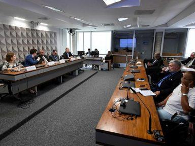 """""""Inconstitucionalidades da PEC 06 precisam ser revistas nesta Casa"""", diz ANFIP no Senado"""
