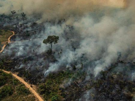 """Papa Francisco: """"É preciso controlar incêndios o quanto antes"""""""