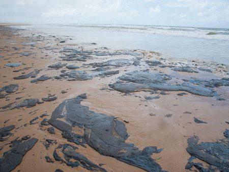 Óleo nas praias nordestinas serve de alerta para desmonte do governo na área ambiental, diz Marina