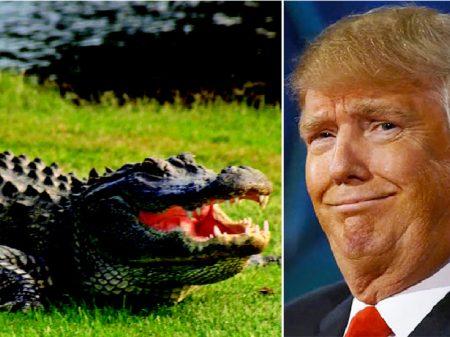 Trump propõe atirar nas  pernas dos imigrantes e fosso com crocodilos