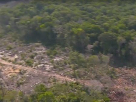 Área degradada na Amazônia cresceu 787% em setembro, diz Imazon