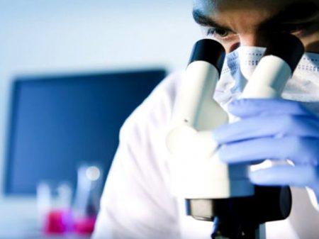 Governo destrói a C&T e faz cientistas saírem do país, denuncia vice-presidente da SBPC