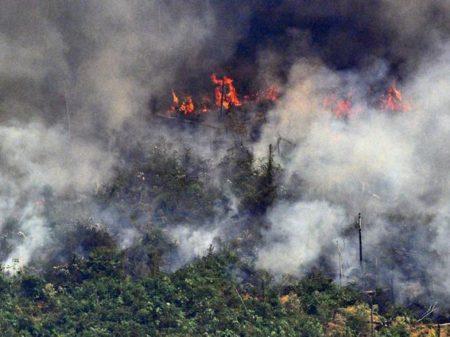 Com Bolsonaro, queimadas na Amazônia aumentaram 30%, registra o Inpe
