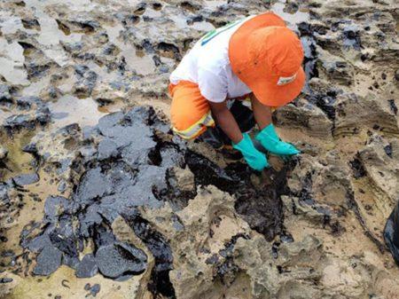 João Campos: após 5 meses o governo federal não tem respostas sobre o óleo nas praias