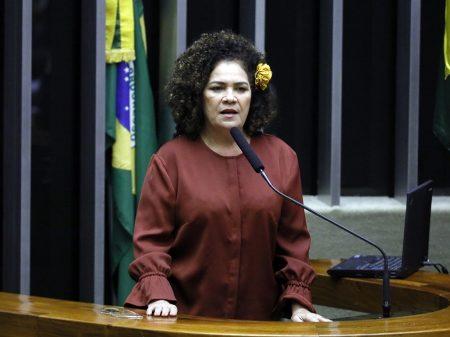 """Perpétua: """"Câmara precisa investigar os atos de Bolsonaro imediatamente"""""""