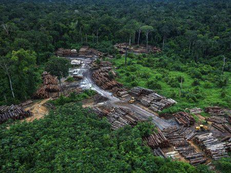 Desmatamento na Amazônia em abril foi 171% maior que o ano passado