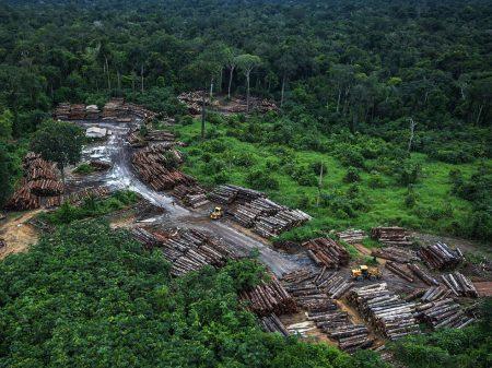 De janeiro a junho, desmatamento na Amazônia foi 25% maior, diz Inpe