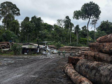 Cai 60% em 6 meses número de punições do Ibama contra crimes ambientais
