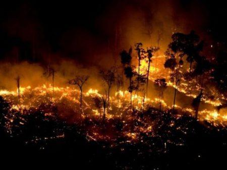 Número de queimadas na Amazônia em junho é o maior em 13 anos, diz Inpe