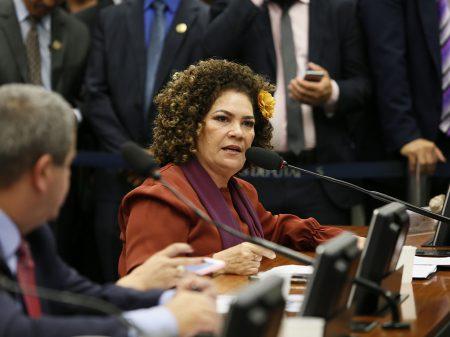 A educação venceu Bolsonaro, por Perpétua Almeida