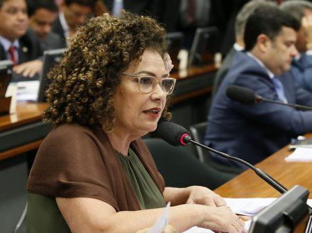 Perpétua denuncia no STF Bolsonaro e filhos por crimes na internet