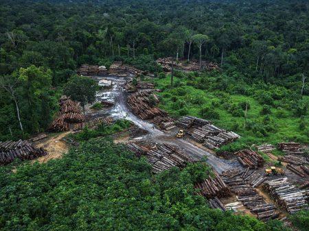 """""""É vergonhoso perder investimento por não coibir o desmatamento"""", diz embaixador"""