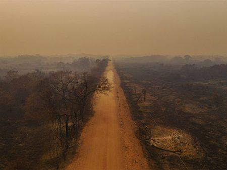 """Bolsonaro diz que Brasil """"está de parabéns"""" na preservação enquanto Pantanal arde em chamas"""