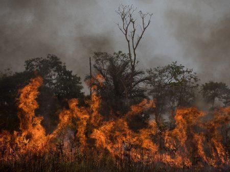 Número de queimadas na Amazônia em agosto foi o segundo maior em 12 anos