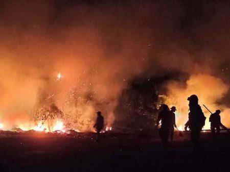 Deputados criticam falta de ação federal no combate às queimadas do Pantanal
