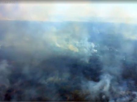 Omisso, governo põe culpa nos estados e no STF por queimadas no Pantanal