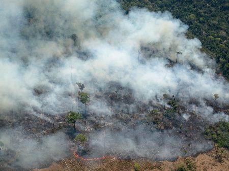 Em 10 meses, queimadas na Amazônia e no Pantanal já batem recordes