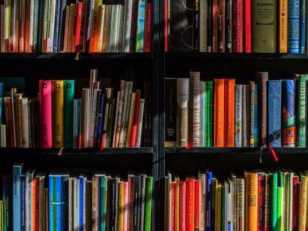 Sindifisco repele taxação de livros