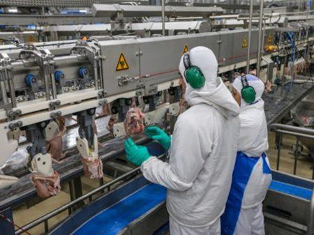 Fim do auxílio derruba produção de alimentos