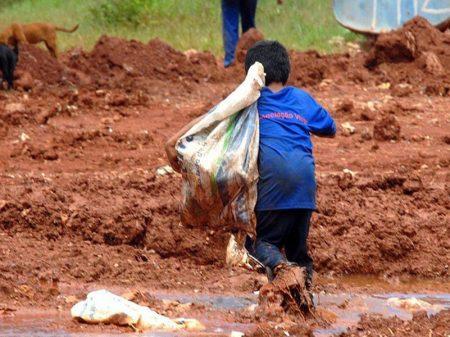 STF manda governo implementar renda básica