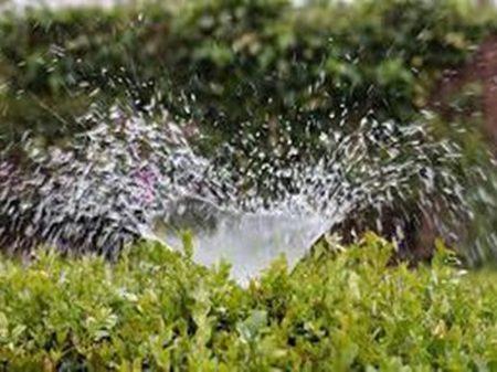 Caos na gestão hídrica pode derrubar PIB agrícola