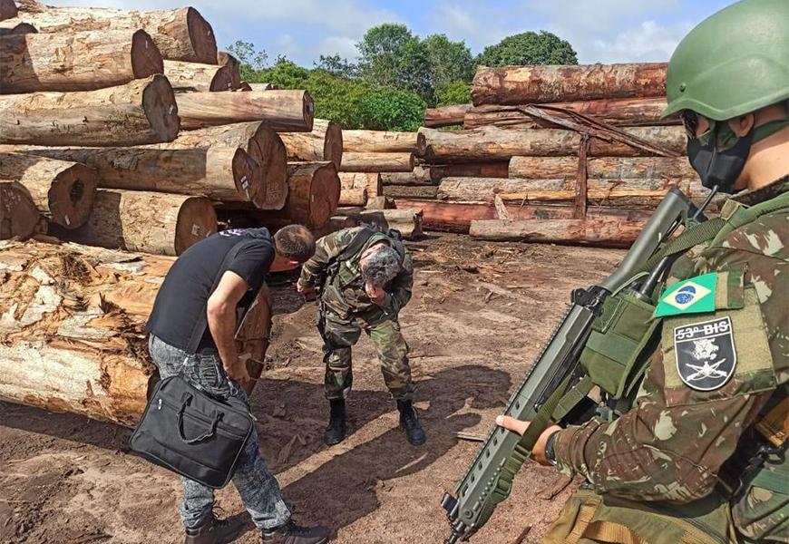 desmatamento stf madeira pf